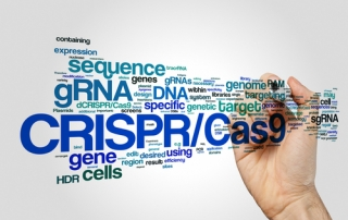 IEBS - CRISPR/Cas9 Gene Editing Tool