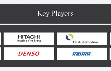 IEBS - Fuel Injection Key Players