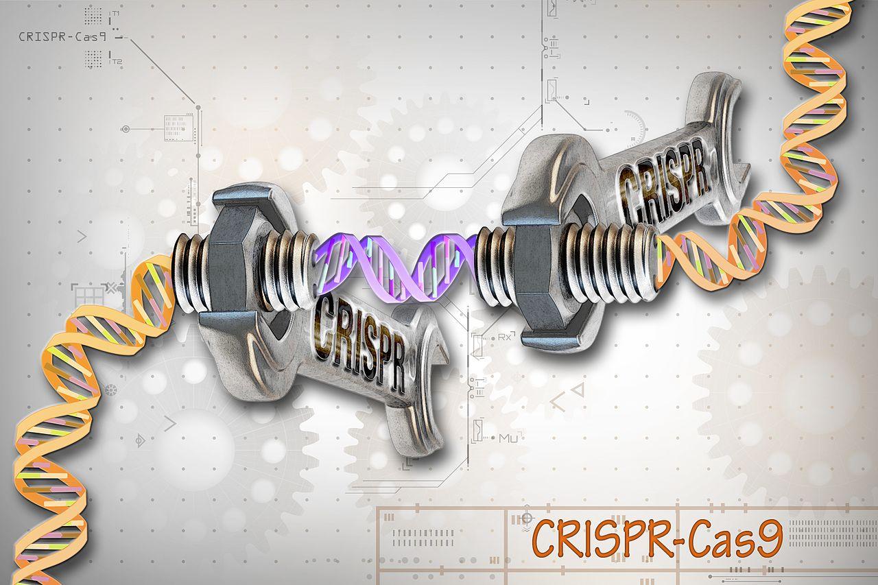 Webinar – CRISPR-Cas9 : Technology Intelligence