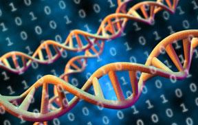 IEBS - DNA digital data storage