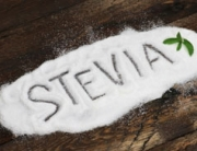 IEBS - stevia 2.0