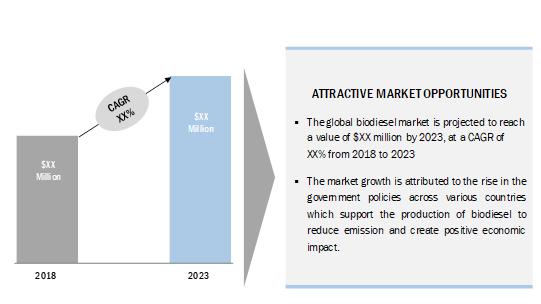 IEBS Biodiesel Market Report