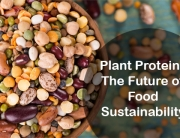 Plant Proteins The Future of Food Sustainability