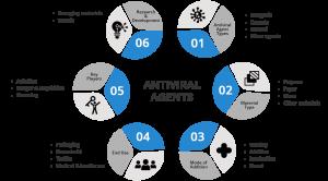 Antiviral Agents - Ingenious e-Brain